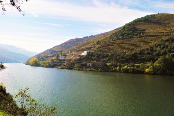 Douro River by Essencia da Latitude